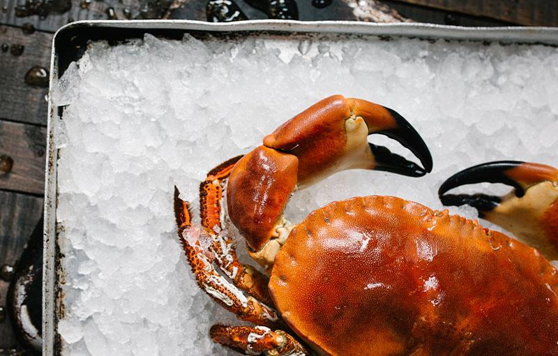 Italian seafood restaurant Melbourne